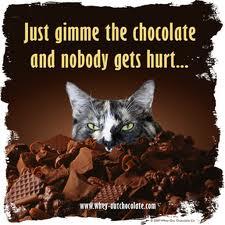 chocolate allergy