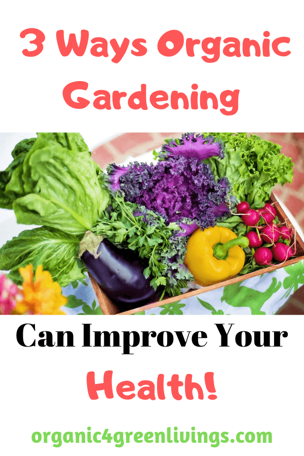 ways gardening can improve your health