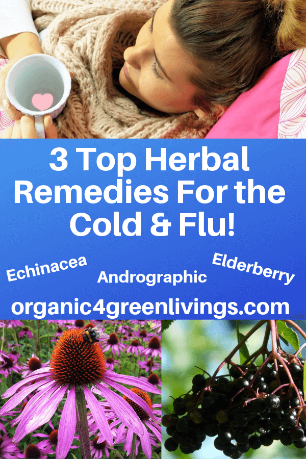Herbal Remedies for the cold and flu