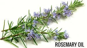Natural hair tips - Rosemary