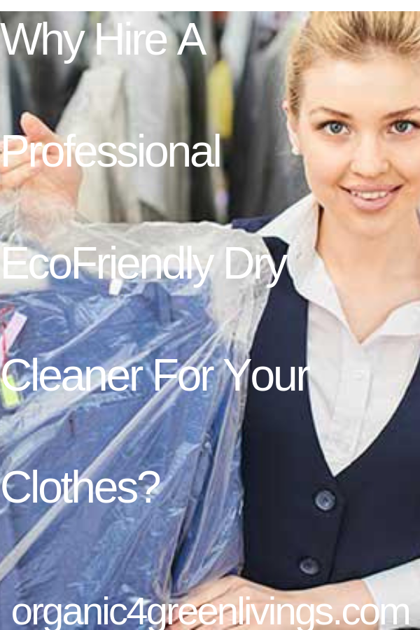 ecofriendly dry cleaners