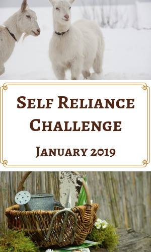 Self Reliance Challenge for 2019