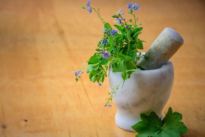 herbs for natural healing
