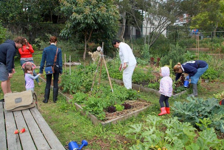 Sustainable living and gardening