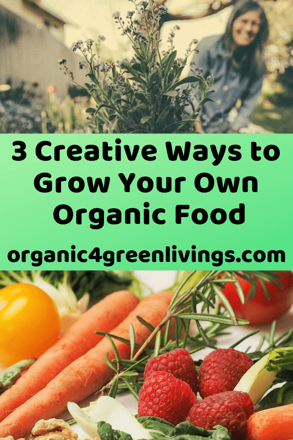 Creative ways to grow your own food