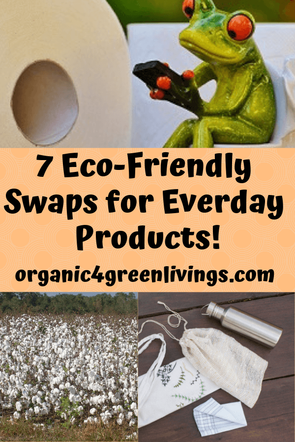 Eco-Friendly Everyday Swaps