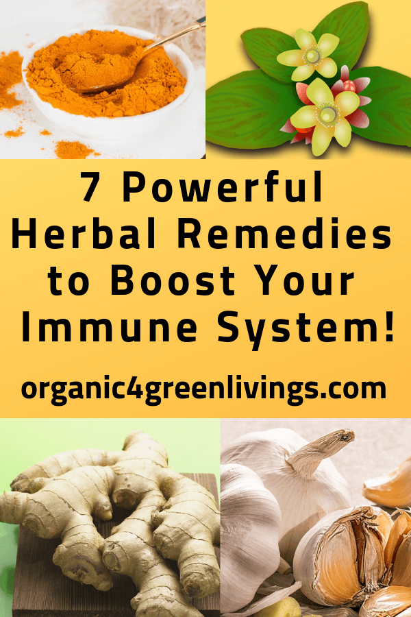 7 Herbal Immune Boosting Remedies