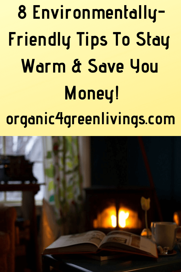 environmentally-friendly tips to save you money