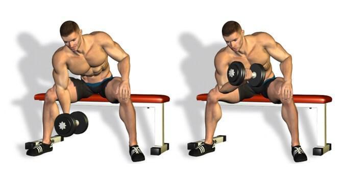 Exercise with dumbells