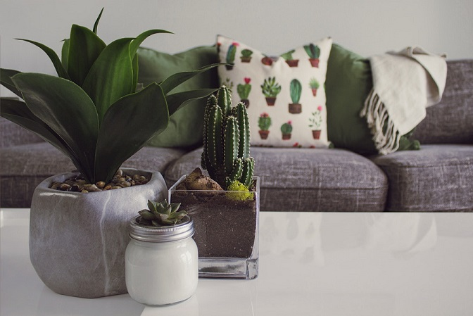 sustainable tips for your living space