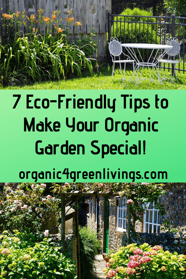 7 Eco-Friendly Tips to Make Your Organic garden special