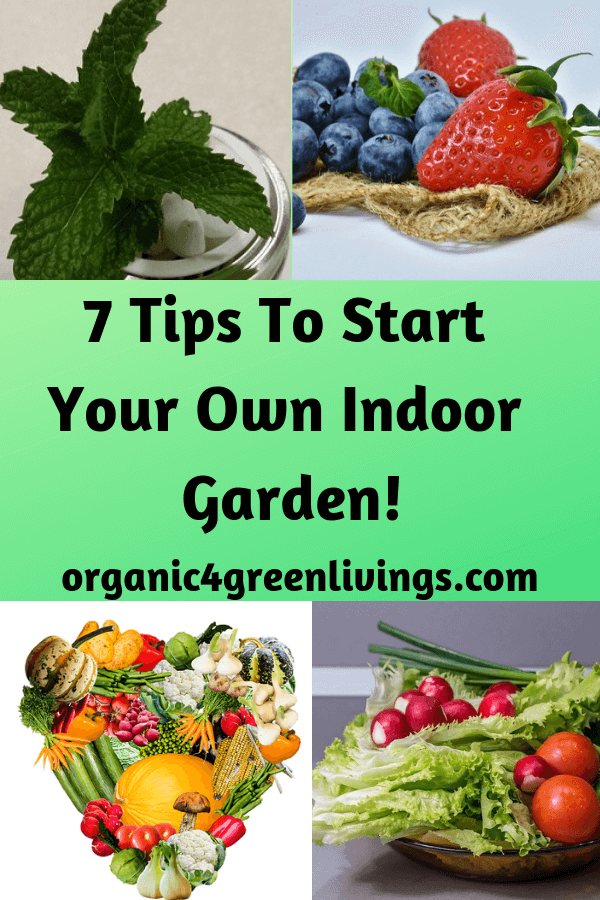 7 Tips to Start Your Own Indoor Garden