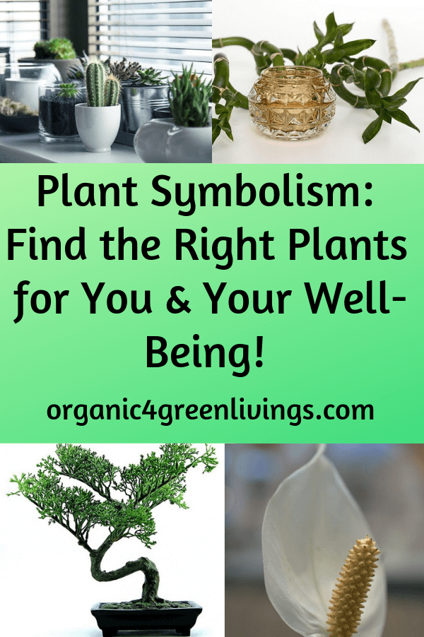 Plant Symbolism