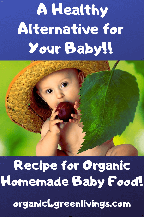 recipe for organic baby food