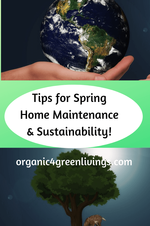 tips for sustainable home maintenance