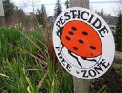 """Ways to Reduce Pesticide Exposure"""