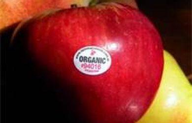 'Organic Apples & Their Health Benefits