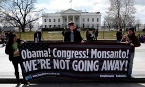 """Stop The Monsanto Protection Act"""
