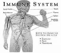 """""""Natural Immune Boosting"""""""