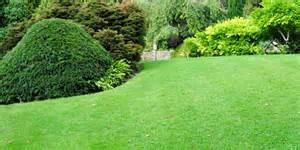 """5 Tips To Greener Lawn"""