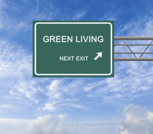 """""""4 Green Living Tips To Make Your Home Eco-Friendly"""""""