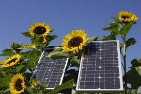 """""""6 Ways Solar Can Save You Money"""""""