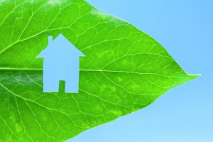 5 Ways To Get Eco-Friendly at Home without Sacrificing Design