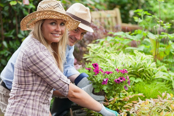 Grow an Organic Garden in 6 Easy Steps