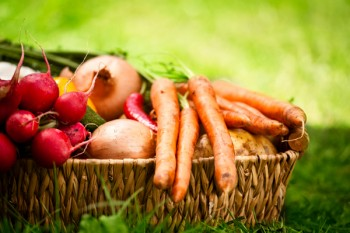 Basket-of-fall-veggies