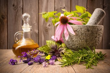 """Herbs that treat joint pain"""