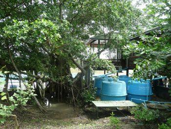 Saving rain water