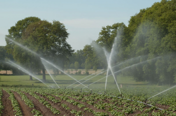 Watering organic agriculural