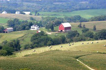 Farming organically