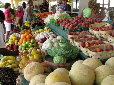 frugal healthy local food