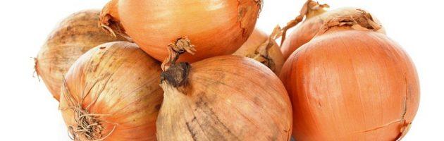 onion-bulbs