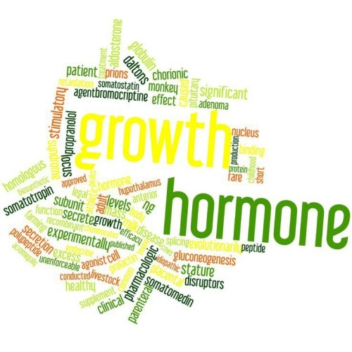 Human-Growth-Hormone-HGH