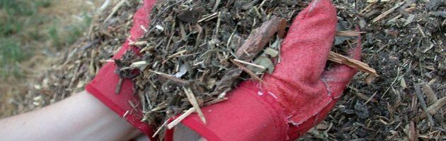 Mulch_shredded_yard_waste 2