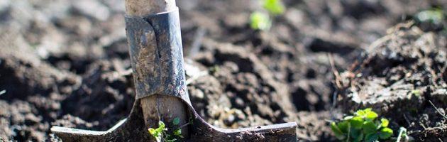 soil and shovel for DIY garden