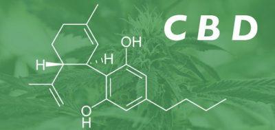 understanding CBD oil