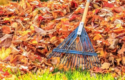 Winterize your lawn and garden