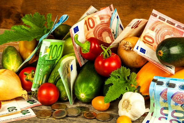 vegetable gardening can make your money
