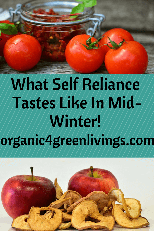 Self Reliance in Mid-Winter