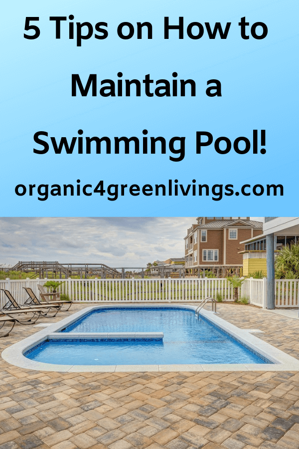 tips on how to maintain a swimming pool