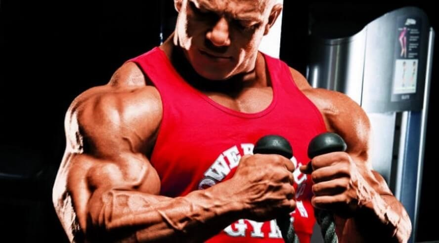 Exercise building biceps