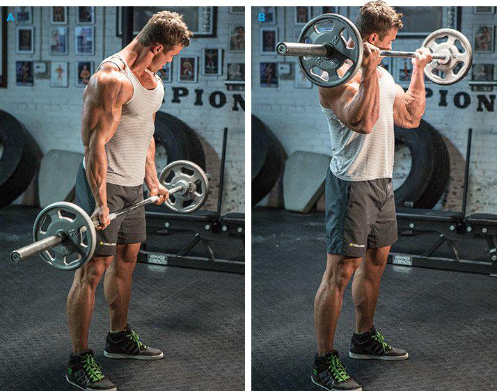 Exercise Barbell curl exercise