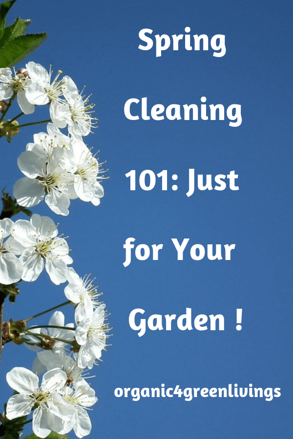Spring clean your garden the healthy way