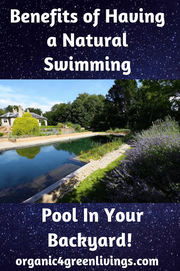 Benefits of a Natural Swimming Pool