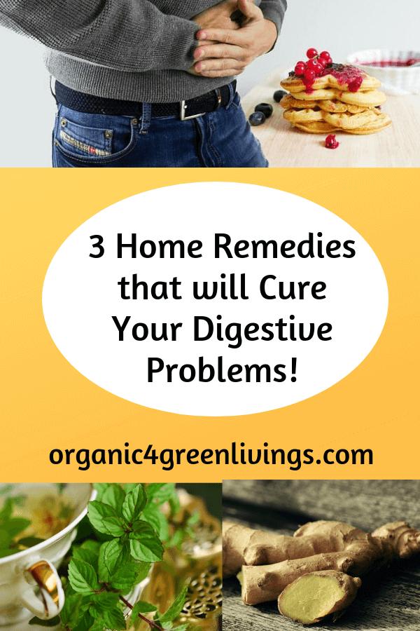 natural digestive remedies