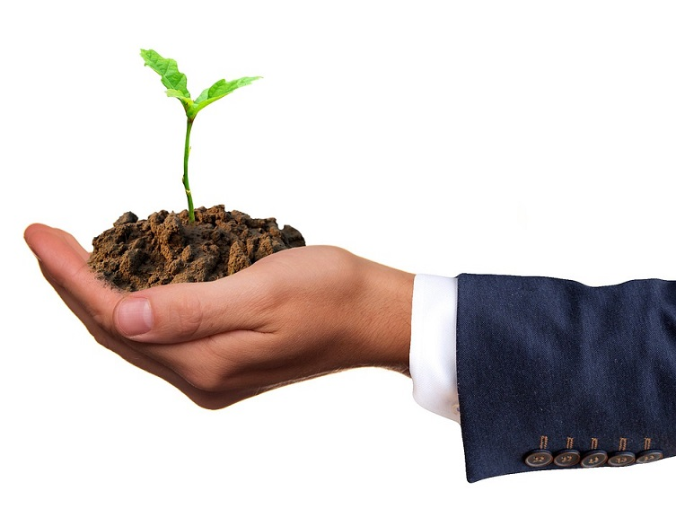 going green at your business