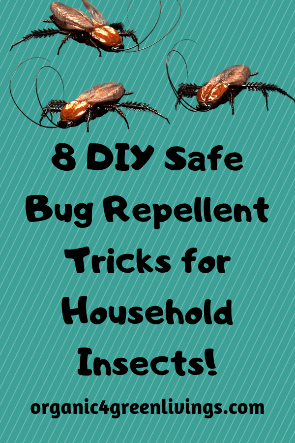 natural bug repellent remedies